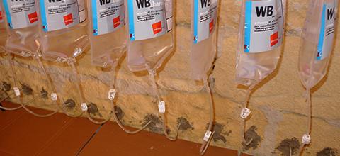 Predisporre le sacche WB-bag inserendo i terminali preforati all'interno dei fori.