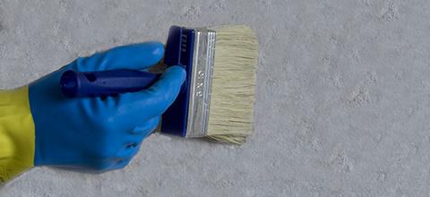 Preparare l'intonaco con PR-antisale prima della pittura ad alta traspirabilità.